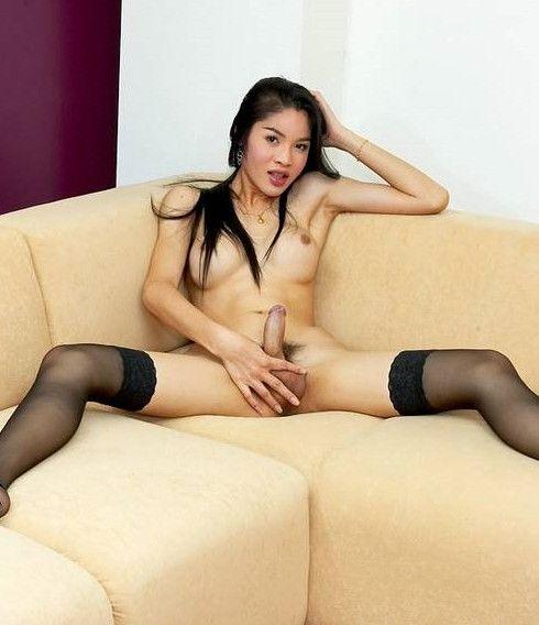 grosse bbw trans asiatique